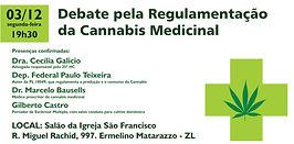debate regulamentação.jpg