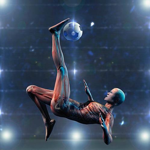 Curso Ciencias del Fútbol (virtual)