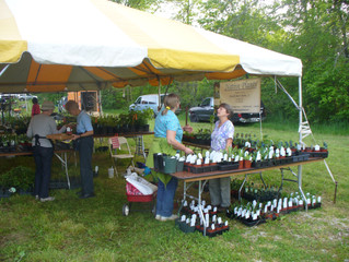Shaw Native Plant Sale in May