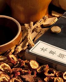 herbalism fort lauderdale