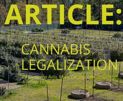 12_CannabisLegalization