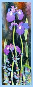 Tall Iris
