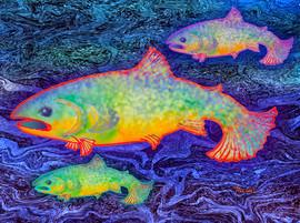 The-Salmon-King.jpg