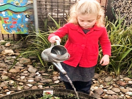 Bush Kinder teaches sustainability