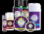 PurpleProductGroup_hemp copy.png