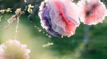 Hur du viker en pompom att dekorera med