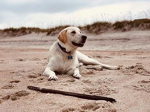 Kirkey_1st-day-at-beach.jpg