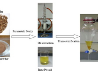"Optimization of oil extraction from waste ""Date pits"" for biodiesel production"