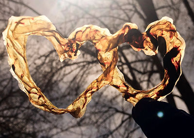 veins_edited.jpg