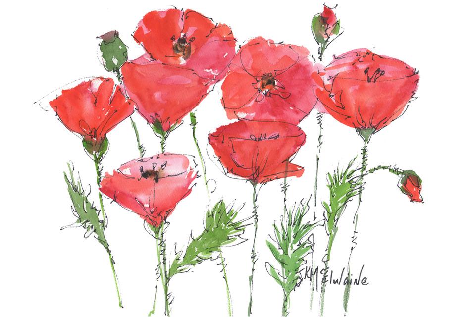 HU FL044 Red Poppy Garden KMcElwaine.jpg