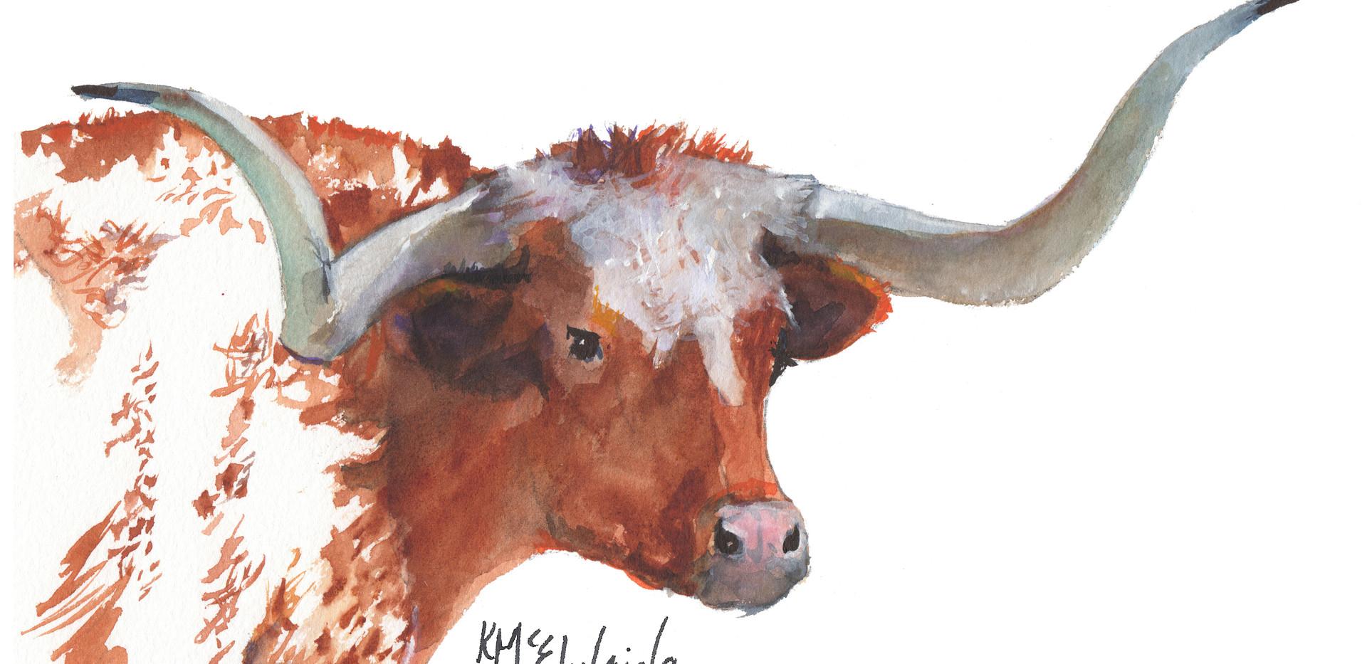 HU LH006 Longhorn Portrait 1409 KMcElwai