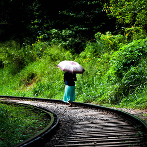 Umbrellas, train lines, women and green.