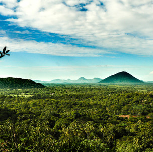 Green view from Dambulla Caves