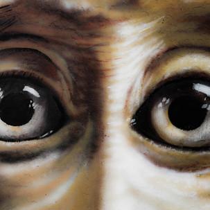 Penang urban art. Monkey E