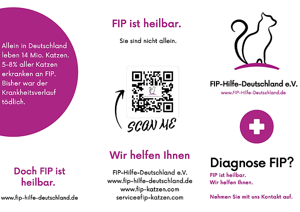 Flyer FIP-Hilfe_Seite_1.png