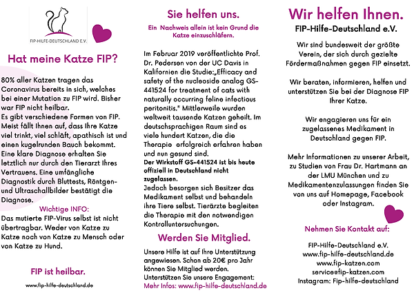 Flyer FIP-Hilfe_Seite_2.png