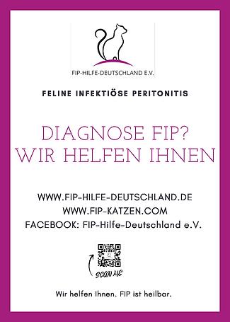 FIP-PlakatA4.png