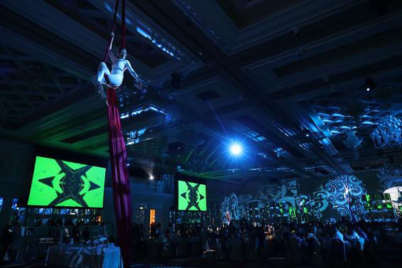 handskiosk - RX big party aerial silk da