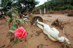 Enchente Santa Catarina