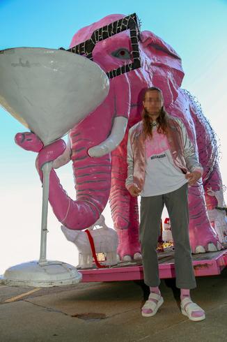 pink ele2000.png