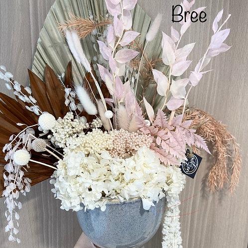 Bree Dried Flower Arrangement