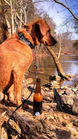 camping dog tag