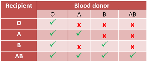 blood group chart.png
