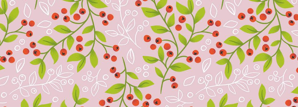 Mistletoe_01.png