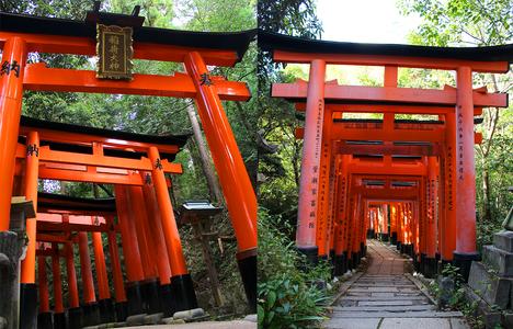 Torii Gates Fushimi Inari Shrine