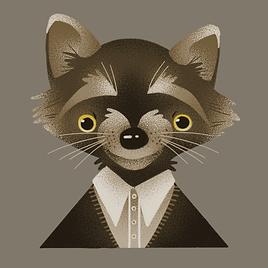 Raccoon_V1.png