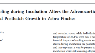 Alex Rubin's paper is out in PBZ