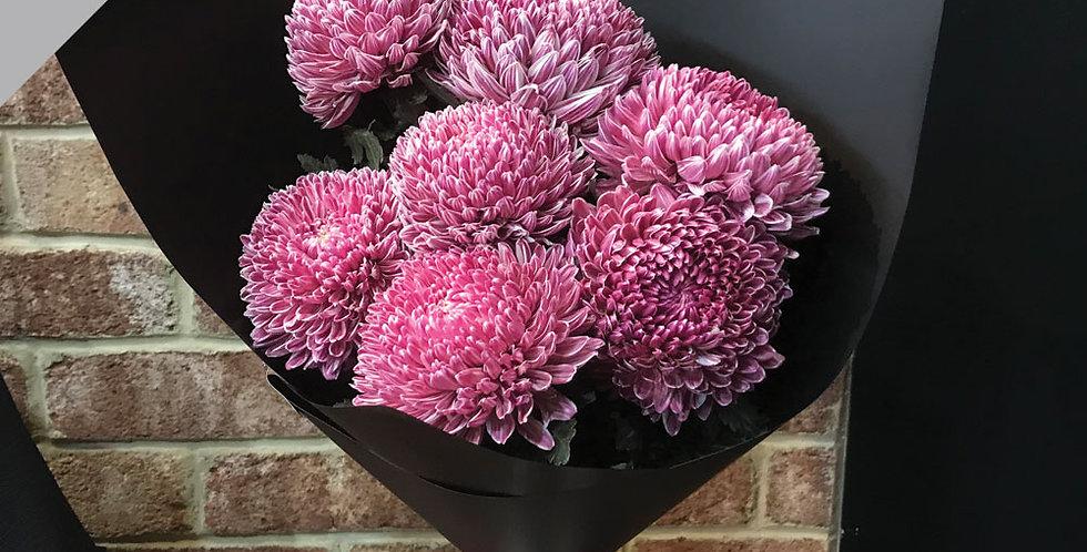 """Chysanthemums """"Big Mummas"""""""