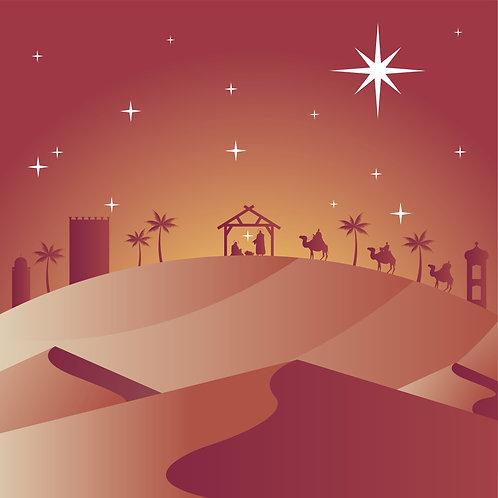 Chúa Giáng Sinh  2020