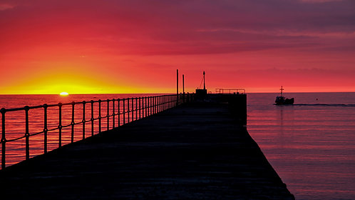 Yellows, Pinks, Purples & Blacks (Wicklow Pier)