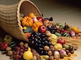 Willow's Wonderful Harvest!