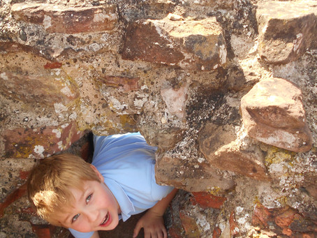 Oak's visit to Wroxeter
