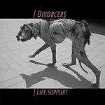 Divorcers Life Support.jpg