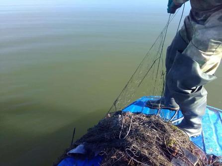 На Цимлянском водохранилище прошел месячник поиска брошенных сетей