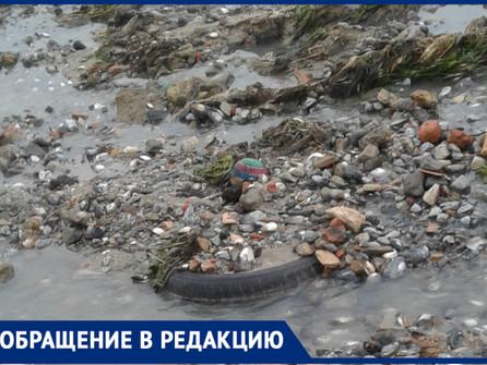 Волгодонцы бьют тревогу из-за едкого запаха на берегу Цимлянского водохранилища