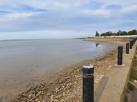 Цимлянское водохранилище начало отступать от городской набережной