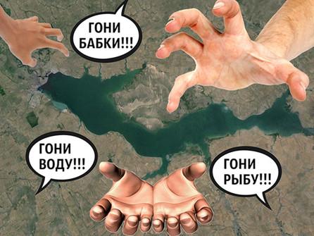 На дне: кто спасёт Цимлянское море от ненасытных потребителей?