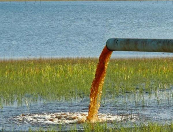 Сточные воды Волгодонска в Цимлянском водохранилище
