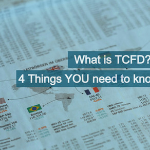 TCFD: 4 things ALL companies need to know.