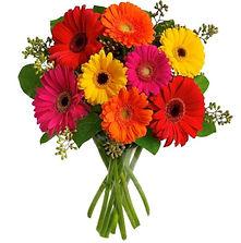 gerberas bouquet De Volta às Flores