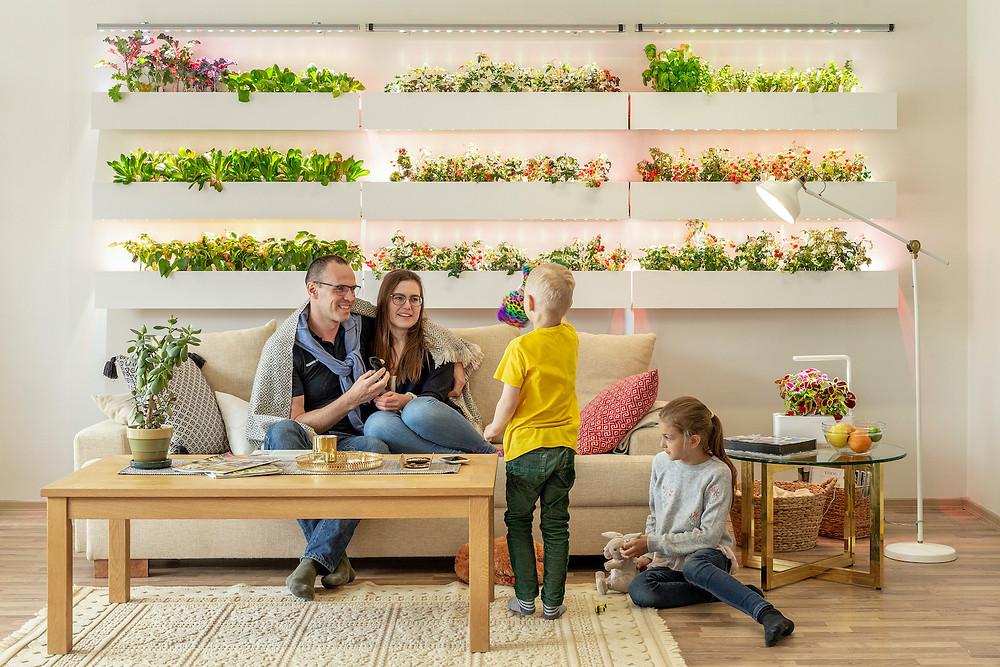 Elutuba 8 ruutmeetri seinapinnaga, kus pere toitu kasvatab. (foto: Click & Grow)