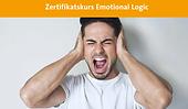 ICPTP EmotionalLogic.png