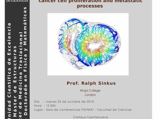 The impacty of active and passive forces on cancer cell proliferation and metastatic processes