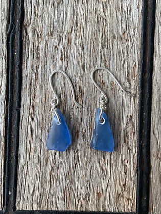 Blue Simple Earrings