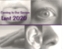 coming to our senses logo.jpg
