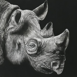 """3A_Born With Horns1_Charcoal_14.5"""" x 21.5"""""""